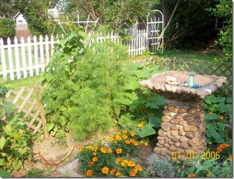 Sarah's garden1