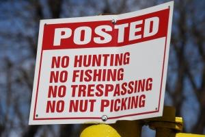 No Nut Picking